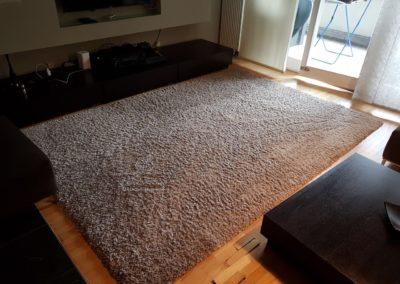 Teppichreinigung-Berlin-Teppich